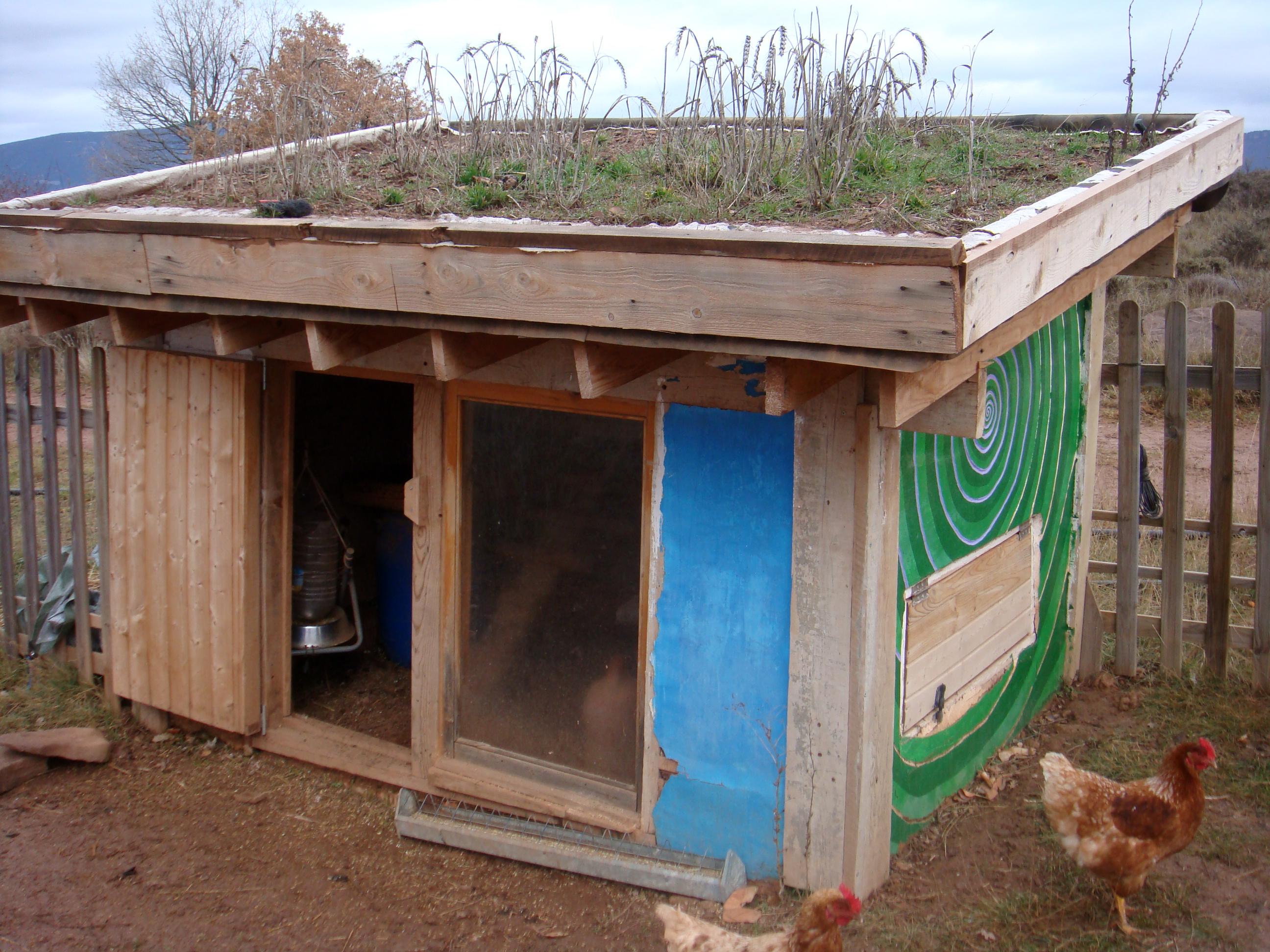 Come Realizzare Un Tetto Economico come costruire un pollaio bioclimatico (foto) | ilquieora